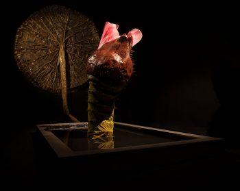 Exhibition: Ingela Ihrman – The Tropics in Gnesta