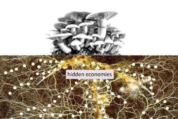 Invitation to talk and discussion about hidden economies